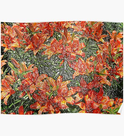 beautiful red lilies Poster