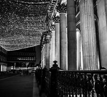 Fairy Lights  by Martyn Phillips