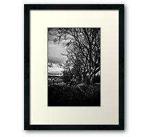 Spooky Path Framed Print