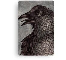 Old Raven Canvas Print