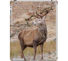 Proud Stag iPad Case/Skin