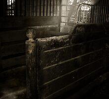 Forgotten Stall by Karri Klawiter