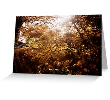 autumn ... Greeting Card