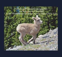 For You Were Like Sheep 1 Peter 2:25 Kids Clothes
