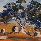 The old gum tree, Sutton Grange, Vic Australia by Margaret Morgan (Watkins)
