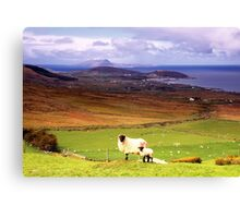 Clew Bay Co. Mayo Canvas Print