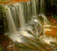 Lower Somersby Falls .. Portrait view by Michael Matthews