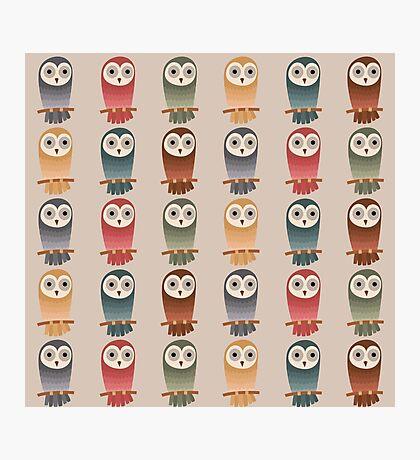Woodland Owls Seamless Pattern Photographic Print