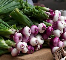 Bunches of Onions by ZWC Photography