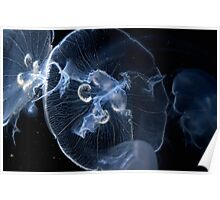 Moon Jelly Ballet Poster