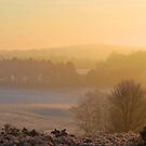 Dawn Light Over Broxhead Common by relayer51
