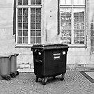 Small bin, big bin by Manuel Gonçalves