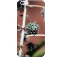 Castor Oil Plant iPhone Case/Skin