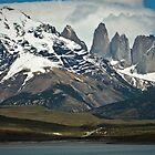 Torres del Paine, Chile by Davide Colombo