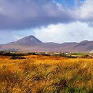 Croagh Patrick by Michael Walsh