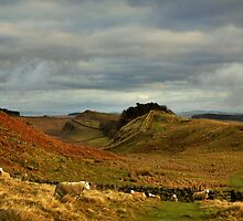 Hadrian's Wall on Housesteads Crag by Joan Thirlaway