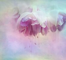 ethereal by Teresa Pople