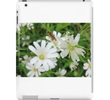 'Insect Inspection' iPad Case/Skin