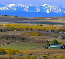 Fabulous Fall  in Foothills  by Judy Grant