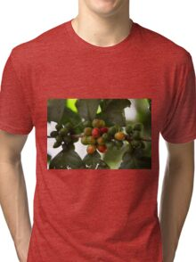Green Coffee Beans Tri-blend T-Shirt