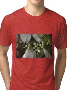 Green Coffee Beans Tri-blend T-Shirt