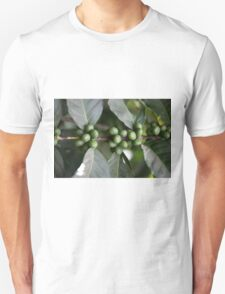 Green Coffee Beans T-Shirt