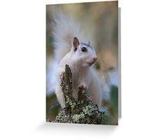 Astronaut Squirrel Greeting Card