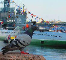 Pigeon Prognosticates Life Down Below by M-EK
