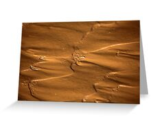 Flow structures in wet mud. Greeting Card