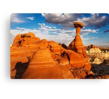 The Toadstools Canvas Print