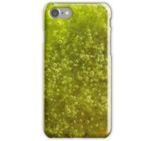 Green algae with air bubbles iPhone Case/Skin