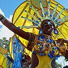 Carnival 19 by globeboater