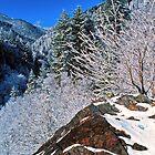 WINTER,NEWFOUND GAP* by Chuck Wickham