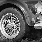 Vintage Bentley by Lou Wilson