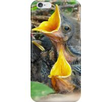Baby Mockingbirds iPhone Case/Skin