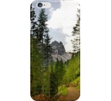 View  Mountain  Ilm Spitze  iPhone Case/Skin