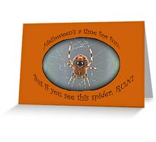 Halloween Greeting Card - Marbled Orb Weaver Spider Greeting Card