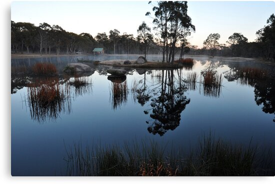Bush Retreat At Dawn. Tenterfield, NSW, Australia by Ralph de Zilva