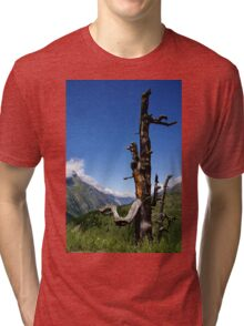 Stripped of its Leaves Tri-blend T-Shirt