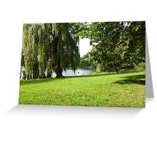 See Trees Grass Greeting Card