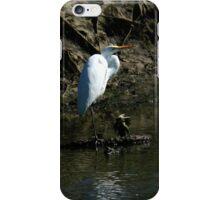 White Egret iPhone Case/Skin