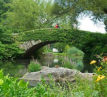 Gapstow Bridge by Cheryl  Lunde