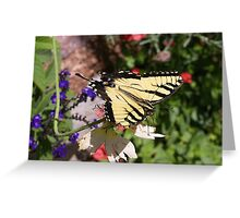 Butterfly Insect Yellow Nature Greeting Card