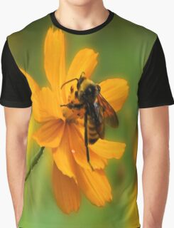 Bumble Bee Busy Graphic T-Shirt