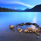 Placidity in Blue by Tula Top