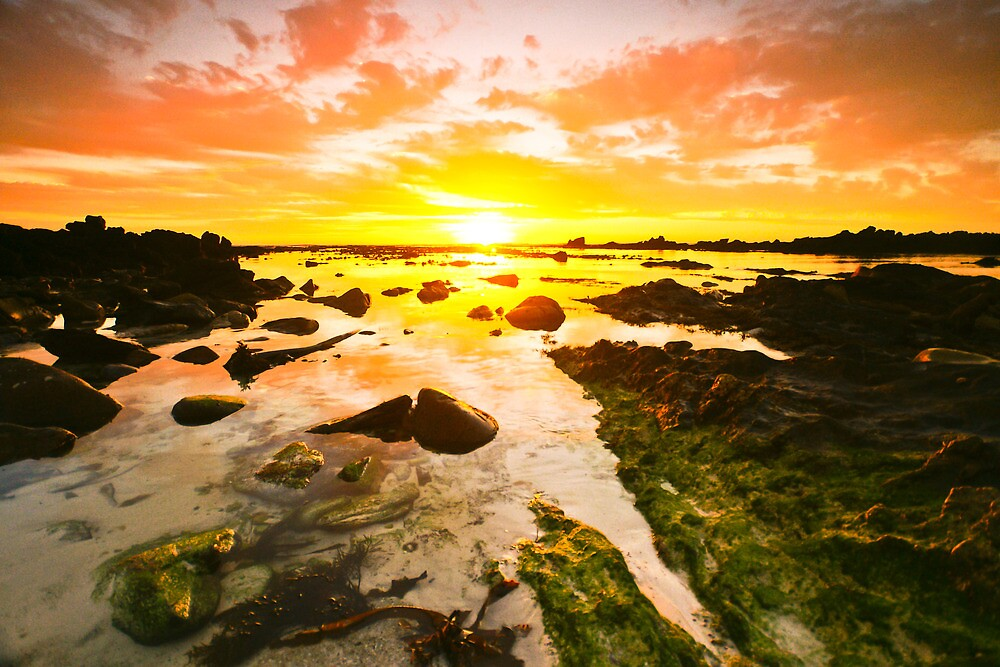 Sunset at Pearly Beach by Anton Alberts