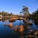 Bush Retreat. Tenterfield, NSW, Australia by Ralph de Zilva