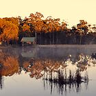 Bush Retreat At Sunrise. Tenterfield, NSW, Australia. by Ralph de Zilva