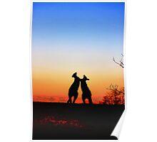 Sunset Serenade Pair of Kangaroos Australian Icon Poster