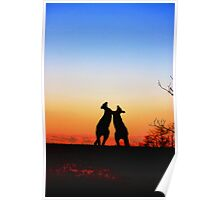 Sunset Serenade Pair of Kangaroos Australian Icon Poster